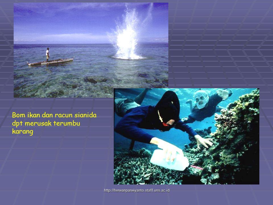 http://herwanparwiyanto.staff.uns.ac.id Bom ikan dan racun sianida dpt merusak terumbu karang