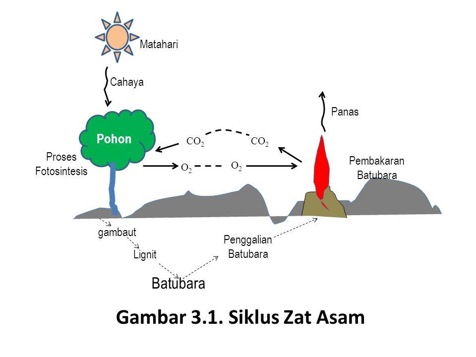 Pohon Matahari Cahaya Pembakaran Batubara Panas gambaut Penggalian Batubara Batubara Lignit CO 2 O2O2 O2O2 Proses Fotosintesis Gambar 3.1. Siklus Zat