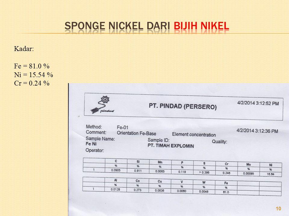 10 Kadar: Fe = 81.0 % Ni = 15.54 % Cr = 0.24 %