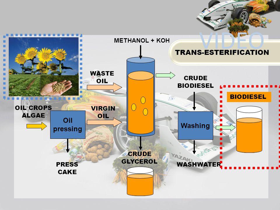 PRESS CAKE BIODIESEL Oil pressing CRUDE GLYCEROL OIL CROPS ALGAE Washing WASTE OIL VIRGIN OIL CRUDE BIODIESEL WASHWATER METHANOL + KOH TRANS-ESTERIFIC