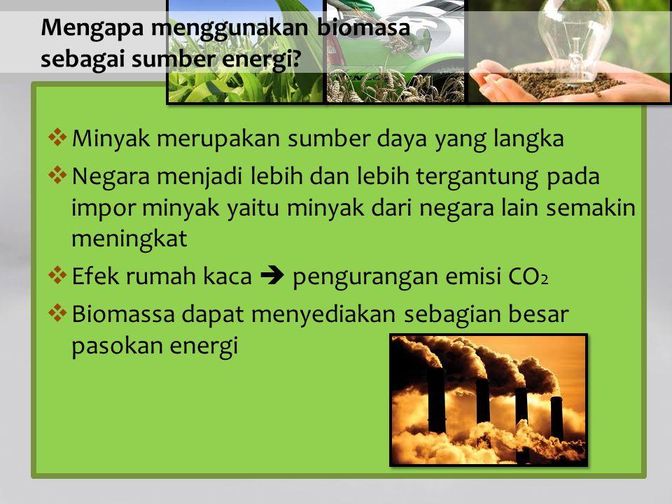 Mengapa menggunakan biomasa sebagai sumber energi?  Minyak merupakan sumber daya yang langka  Negara menjadi lebih dan lebih tergantung pada impor m