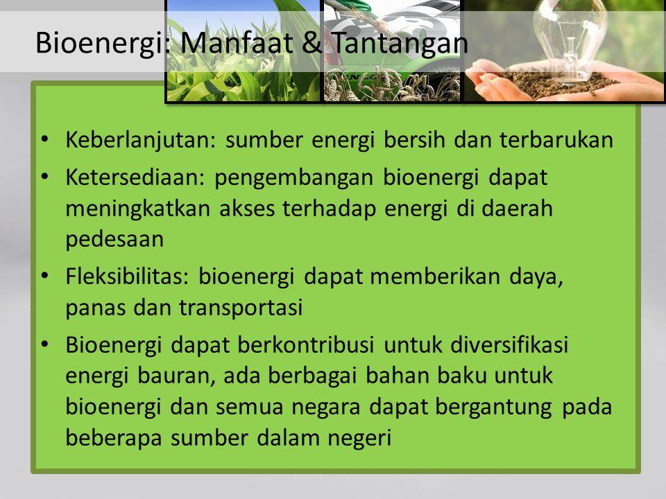 Mitigasi perubahan iklim - bioenergi dapat secara signifikan mengurangi gas rumah kaca (GRK)  dibandingkan dengan bahan bakar fosil Diversifikasi mata pencaharian pedesaan - di sektor energi, dan penggunaan jasa energi baru yang tersedia - memfasilitasi pengembangan pedesaan Pengurangan degradasi lahan khususnya melalui penanaman bahan baku bioenergi abadi Bioenergi: Manfaat & Tantangan