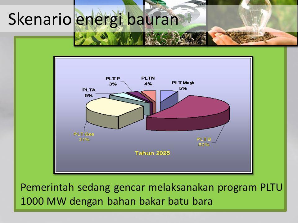 Skenario energi bauran Pemerintah sedang gencar melaksanakan program PLTU 1000 MW dengan bahan bakar batu bara
