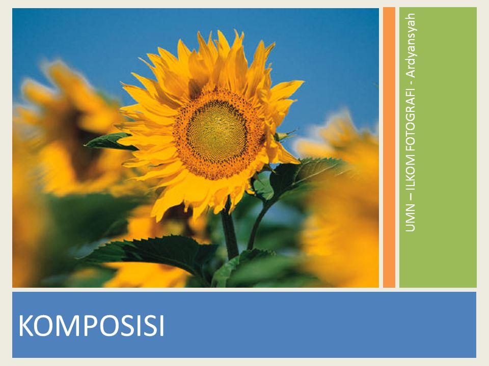 Komposisi dalam pengambilan gambar kamera atau foto, sangat penting, karena menentukan baik atau tidaknya hasil dari suatu foto.