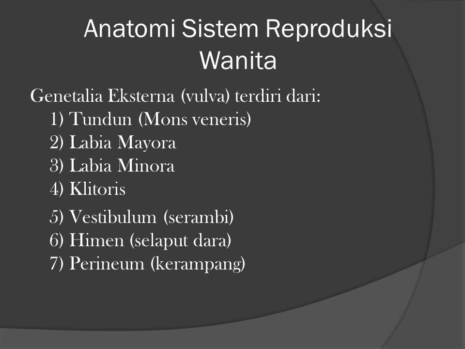Anatomi Sistem Reproduksi Wanita Genetalia Eksterna (vulva) terdiri dari: 1) Tundun (Mons veneris) 2) Labia Mayora 3) Labia Minora 4) Klitoris 5) Vest