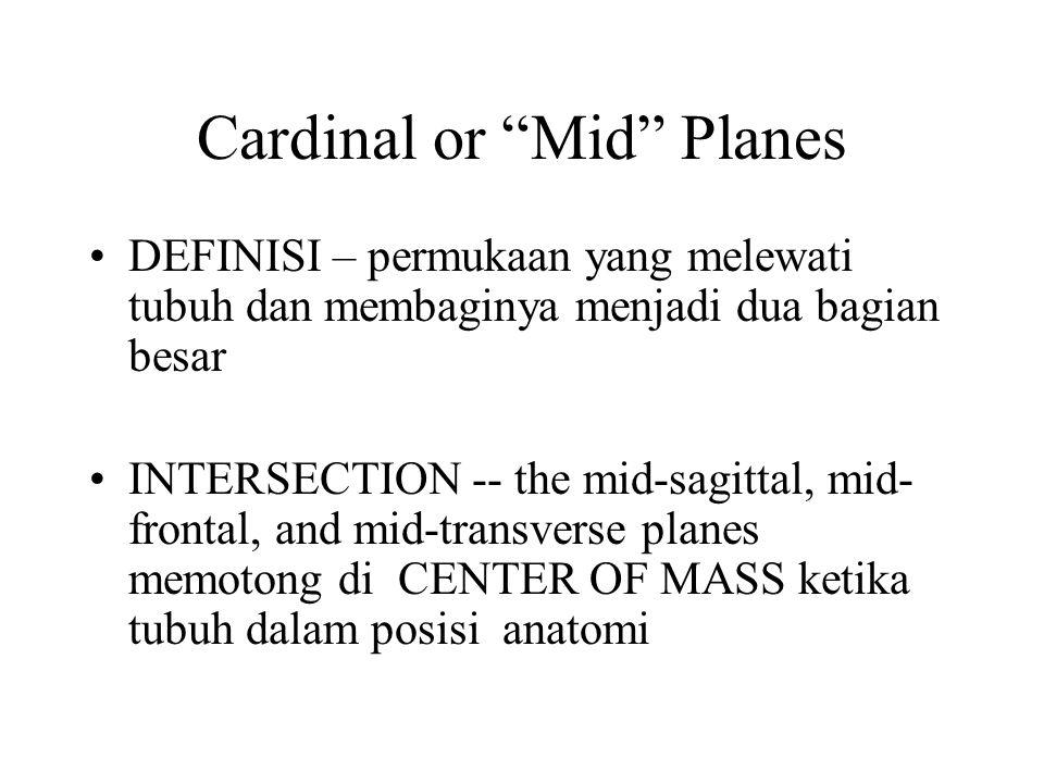 """Cardinal or """"Mid"""" Planes DEFINISI – permukaan yang melewati tubuh dan membaginya menjadi dua bagian besar INTERSECTION -- the mid-sagittal, mid- front"""