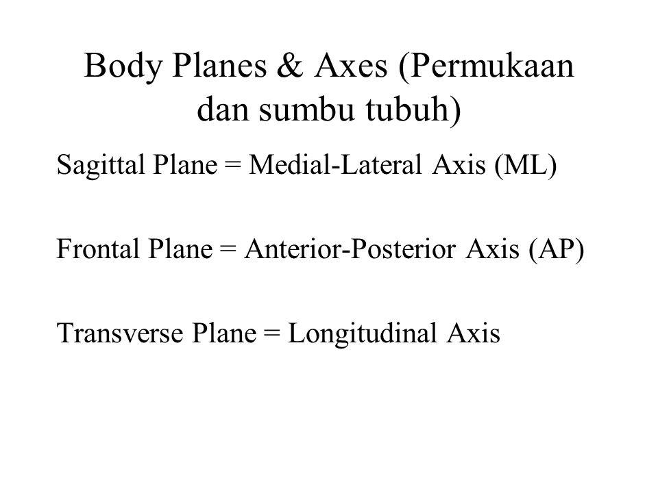 Body Planes & Axes (Permukaan dan sumbu tubuh) Sagittal Plane = Medial-Lateral Axis (ML) Frontal Plane = Anterior-Posterior Axis (AP) Transverse Plane