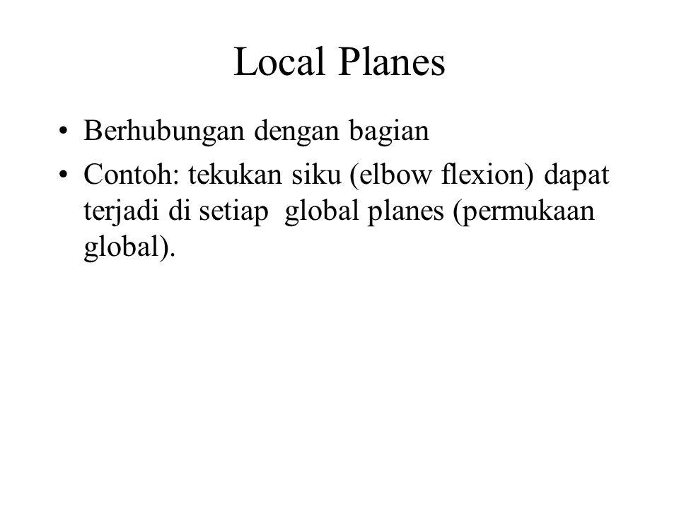 Local Planes Berhubungan dengan bagian Contoh: tekukan siku (elbow flexion) dapat terjadi di setiap global planes (permukaan global).