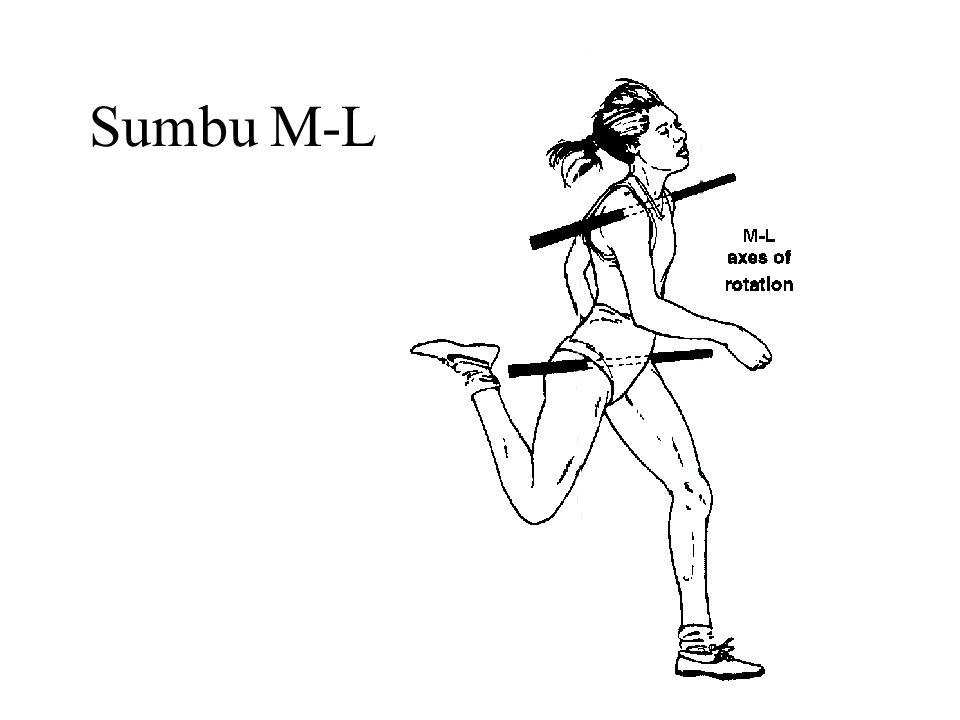 Sumbu M-L