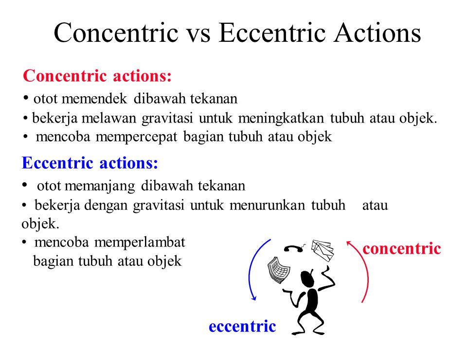 Eccentric actions: otot memanjang dibawah tekanan bekerja dengan gravitasi untuk menurunkan tubuh atau objek. mencoba memperlambat bagian tubuh atau o