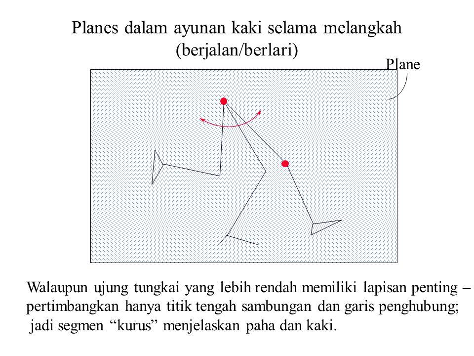 Plane Walaupun ujung tungkai yang lebih rendah memiliki lapisan penting – pertimbangkan hanya titik tengah sambungan dan garis penghubung; jadi segmen