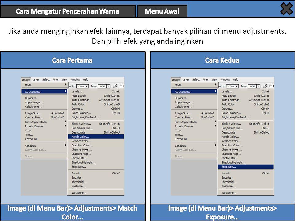Jika anda menginginkan efek lainnya, terdapat banyak pilihan di menu adjustments.