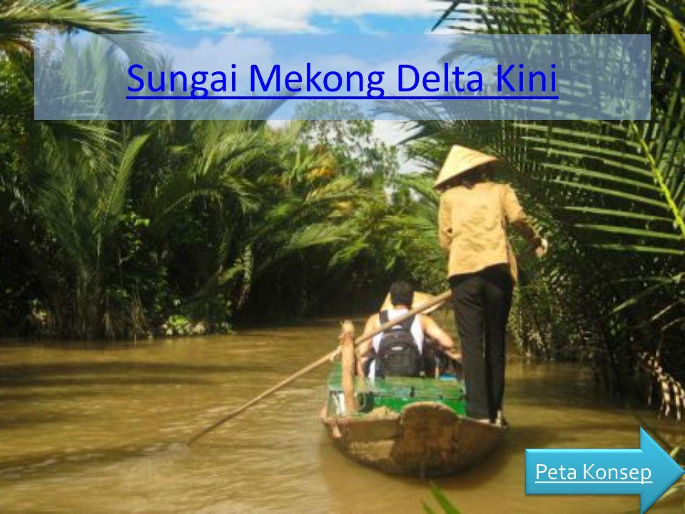 Sungai Mekong Delta Kini Peta Konsep
