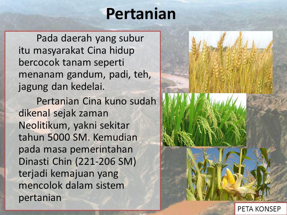Pertanian Pada daerah yang subur itu masyarakat Cina hidup bercocok tanam seperti menanam gandum, padi, teh, jagung dan kedelai. Pertanian Cina kuno s