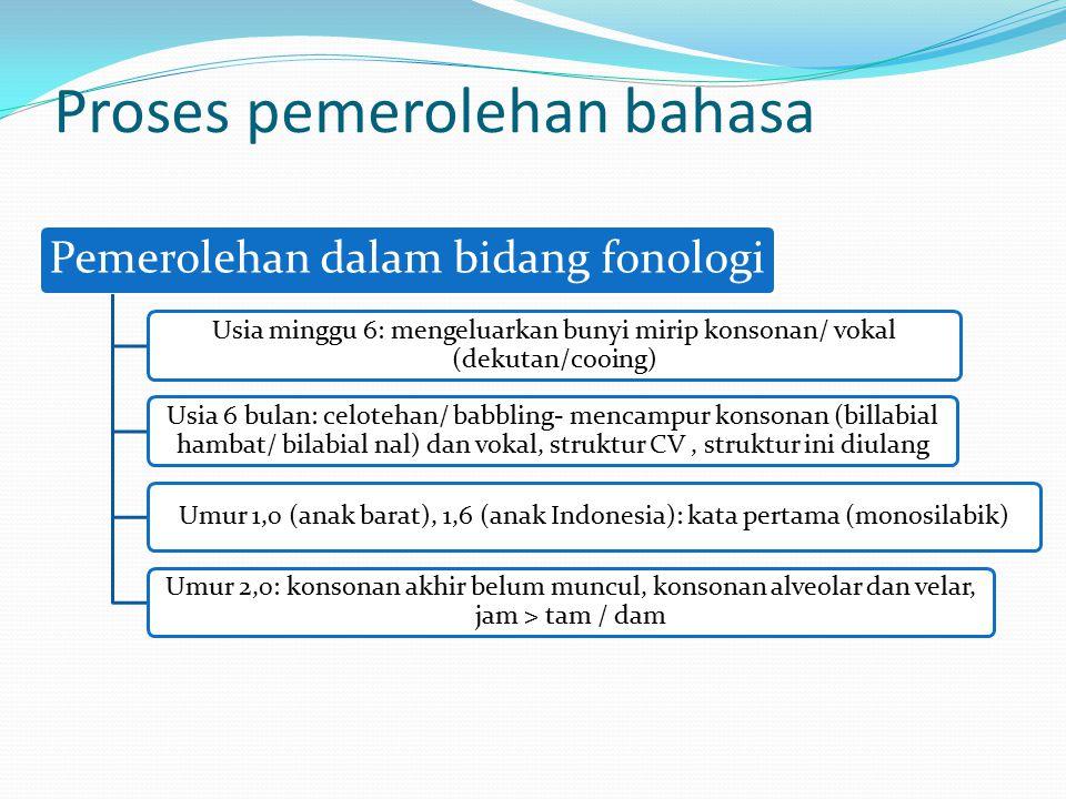 Proses pemerolehan bahasa Pemerolehan dalam bidang fonologi Usia minggu 6: mengeluarkan bunyi mirip konsonan/ vokal (dekutan/cooing) Usia 6 bulan: cel
