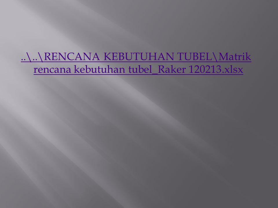 ..\..\RENCANA KEBUTUHAN TUBEL\Matrik rencana kebutuhan tubel_Raker 120213.xlsx