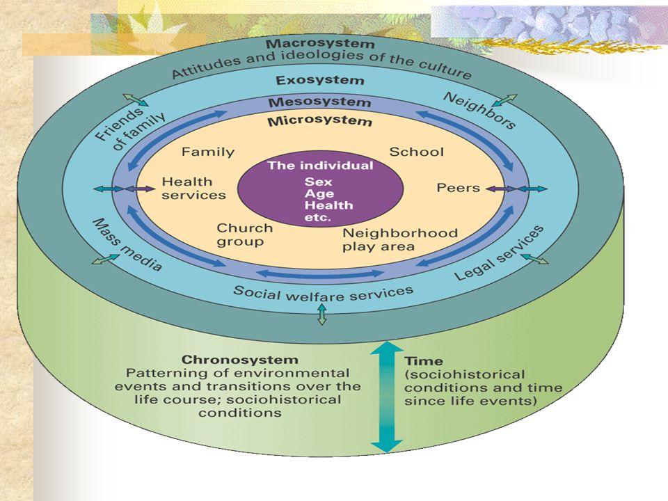 Teori Ekologi Bronfrenbrenner Teori yg memandang perkembangan anak dalam konteks sistem hubungan yg membentuk lingkungannya.