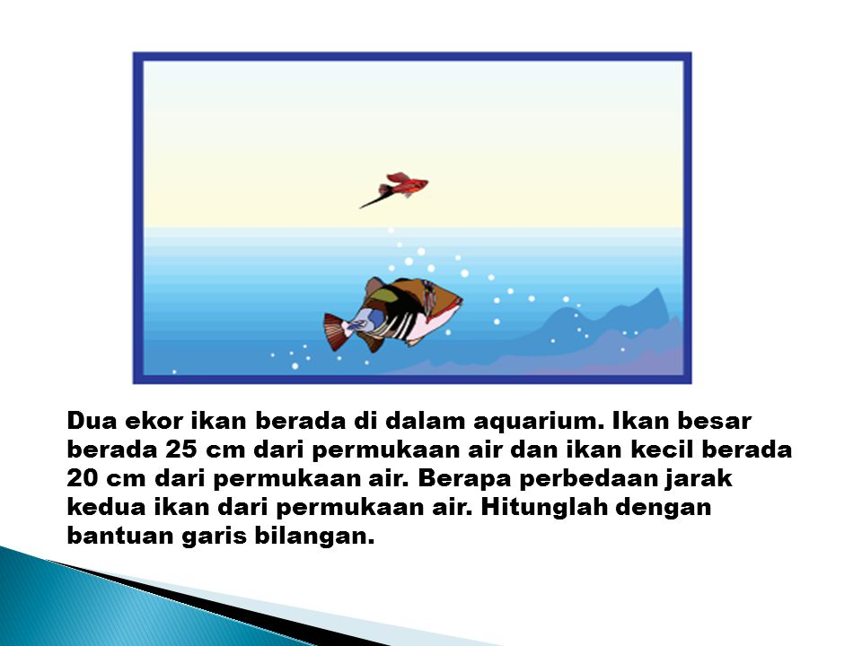Dua ekor ikan berada di dalam aquarium. Ikan besar berada 25 cm dari permukaan air dan ikan kecil berada 20 cm dari permukaan air. Berapa perbedaan ja