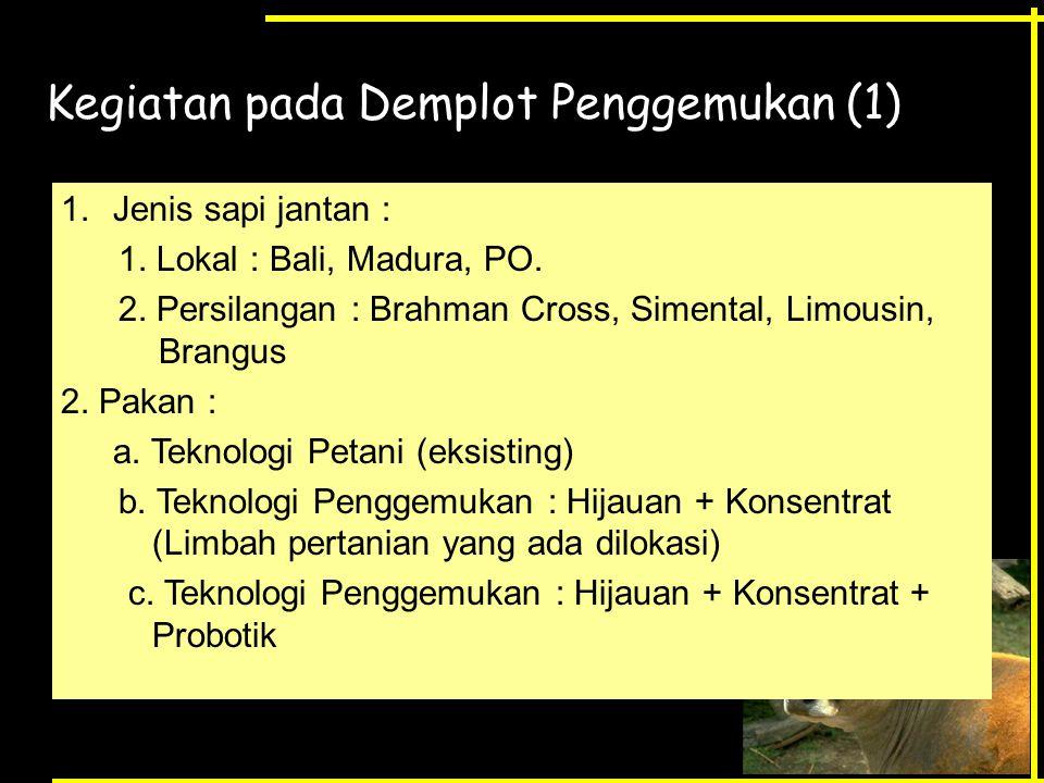 Kegiatan pada Demplot Penggemukan (1) 1.Jenis sapi jantan : 1. Lokal : Bali, Madura, PO. 2. Persilangan : Brahman Cross, Simental, Limousin, Brangus 2