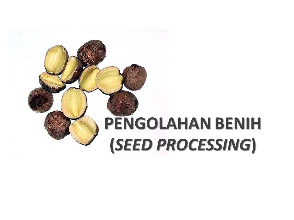 TUJUAN Mempertahankan mutu benih yang dicapai pada saat panen.