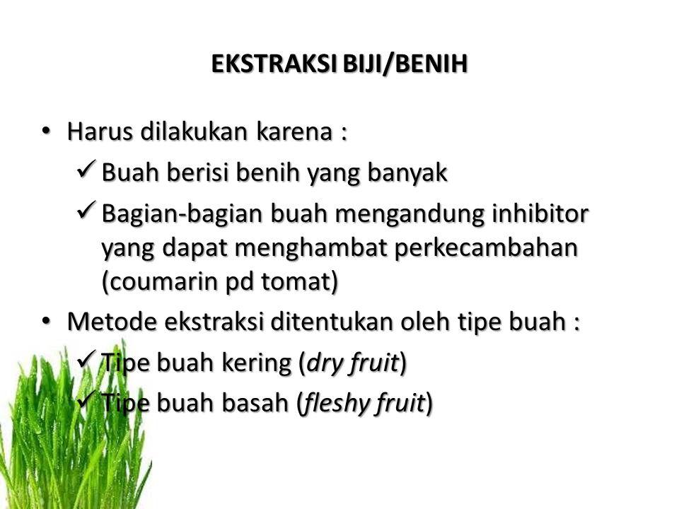EKSTRAKSI BIJI/BENIH Harus dilakukan karena : Harus dilakukan karena : Buah berisi benih yang banyak Buah berisi benih yang banyak Bagian-bagian buah mengandung inhibitor yang dapat menghambat perkecambahan (coumarin pd tomat) Bagian-bagian buah mengandung inhibitor yang dapat menghambat perkecambahan (coumarin pd tomat) Metode ekstraksi ditentukan oleh tipe buah : Metode ekstraksi ditentukan oleh tipe buah : Tipe buah kering (dry fruit) Tipe buah kering (dry fruit) Tipe buah basah (fleshy fruit) Tipe buah basah (fleshy fruit)