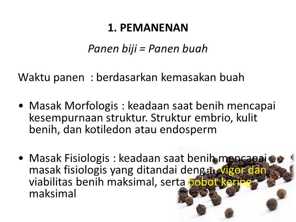 1. PEMANENAN Panen biji = Panen buah Waktu panen : berdasarkan kemasakan buah Masak Morfologis : keadaan saat benih mencapai kesempurnaan struktur. St