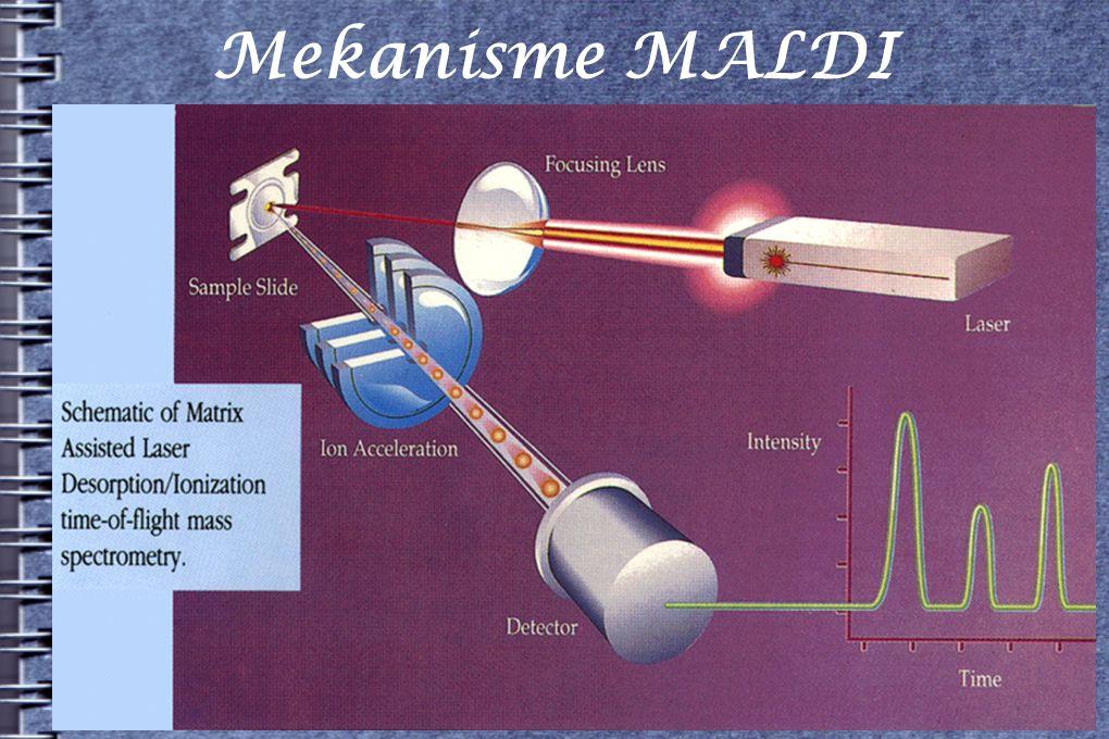 Mekanisme MALDI