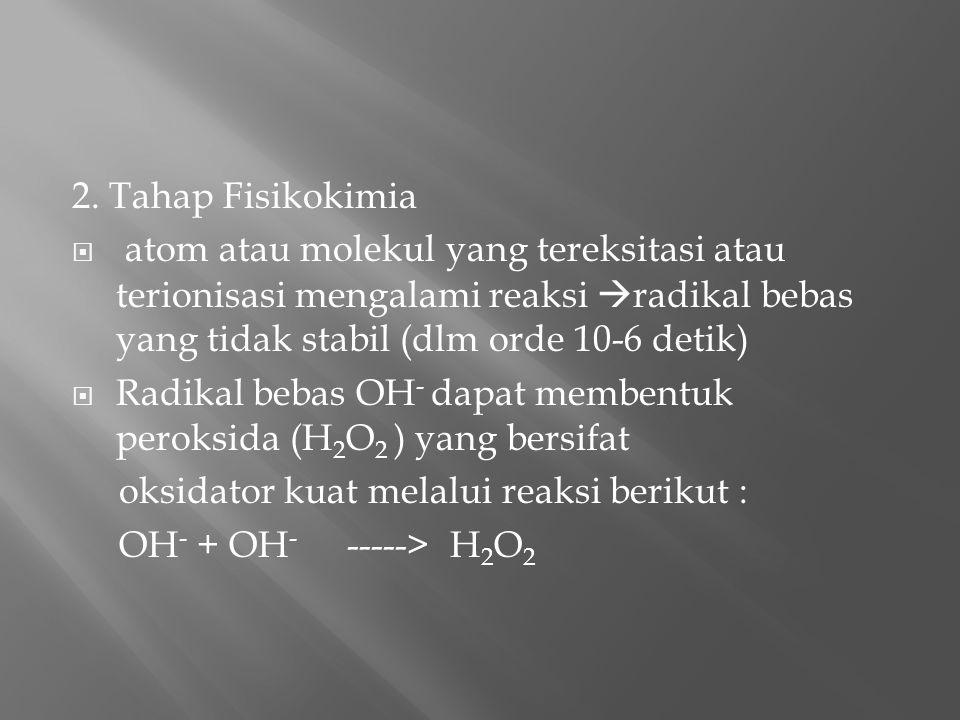2. Tahap Fisikokimia  atom atau molekul yang tereksitasi atau terionisasi mengalami reaksi  radikal bebas yang tidak stabil (dlm orde 10-6 detik) 