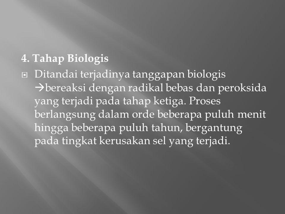 4. Tahap Biologis  Ditandai terjadinya tanggapan biologis  bereaksi dengan radikal bebas dan peroksida yang terjadi pada tahap ketiga. Proses berlan