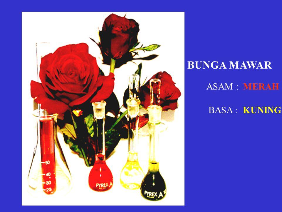 BUNGA MAWAR ASAM : MERAH BASA : KUNING