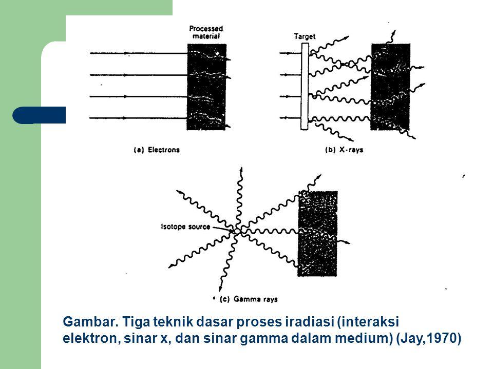 Gambar. Tiga teknik dasar proses iradiasi (interaksi elektron, sinar x, dan sinar gamma dalam medium) (Jay,1970)