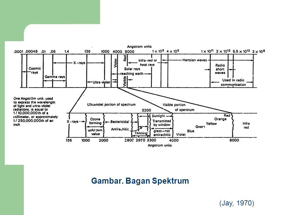 Gambar. Bagan Spektrum (Jay, 1970)
