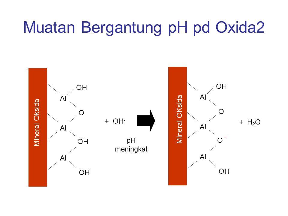 Muatan Bergantung pH pd Oxida2 Al O OH Al OH Al O O ¯ Al OH + OH - pH meningkat + H 2 O Mineral Oksida Mineral OKsida
