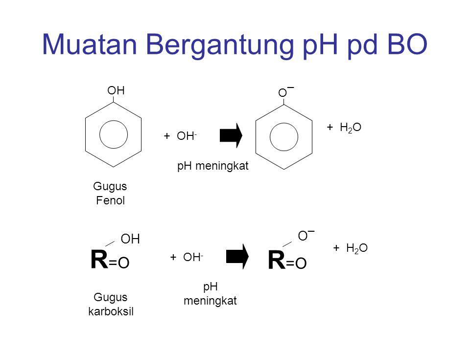 KTK Total Pada kebanyakan tanah terdapat muatan kombinasi –Muatan Permanen - Mineral liat –Muatan bergantung – Oksida Terselimut dan BO –KTK = jumlah muatan2 tersebut - me/100g atau cmol c /kg tanah Muatan Negatif Bersih (KTK) pH Tanah 3.05.07.09.0