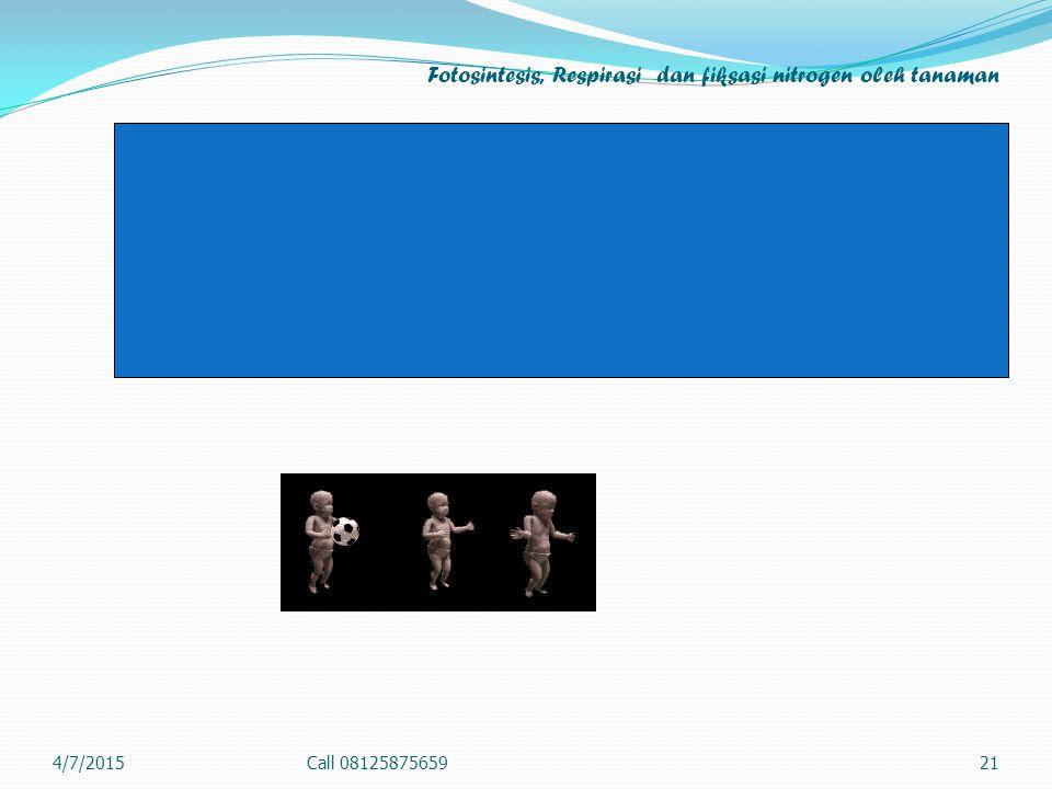 Fotosintesis, Respirasi dan fiksasi nitrogen oleh tanaman 4/7/2015Call 0812587565921