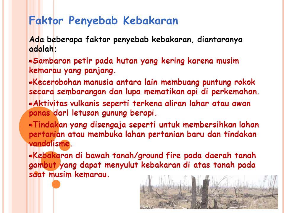 Kebakaran Lahan Gambut Penyebab kebakaran Kebakaran lahan gambut Indonesia Beberapa efek negatif dari kebakaran hutan dan lahan