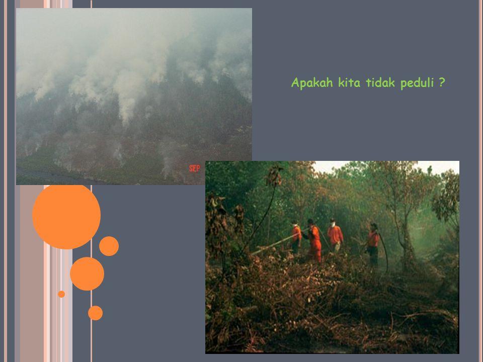 K EBAKARAN LAHAN GAMBUT I NDONESIA Kebakaran hutan dan lahan seakan sudah menjadi tradisi tahunan di Indonesia terutama setiap kali musim kemarau datang.