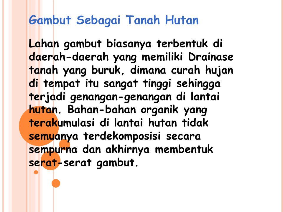 Lahan Gambut Indonesia Penyebaran tanah gambut di Indonesia diperkirakan meliputi areal seluas lebih kurang 28.86 juta hektar yakni  13,5% dari luas daratan Indoensia, dimana 8,98 juta hektar dijumpai di Pulau Sumatera sedangkan sisanya tersebar di Pulau Kalimantan, Irian Jaya dan beberapa tempat di Pulau Jawa.