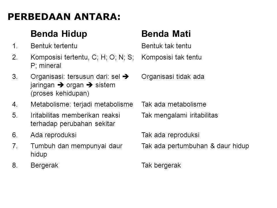 PERBEDAAN ANTARA: Benda HidupBenda Mati 1.Bentuk tertentuBentuk tak tentu 2.Komposisi tertentu, C; H; O; N; S; P; mineral Komposisi tak tentu 3.Organi