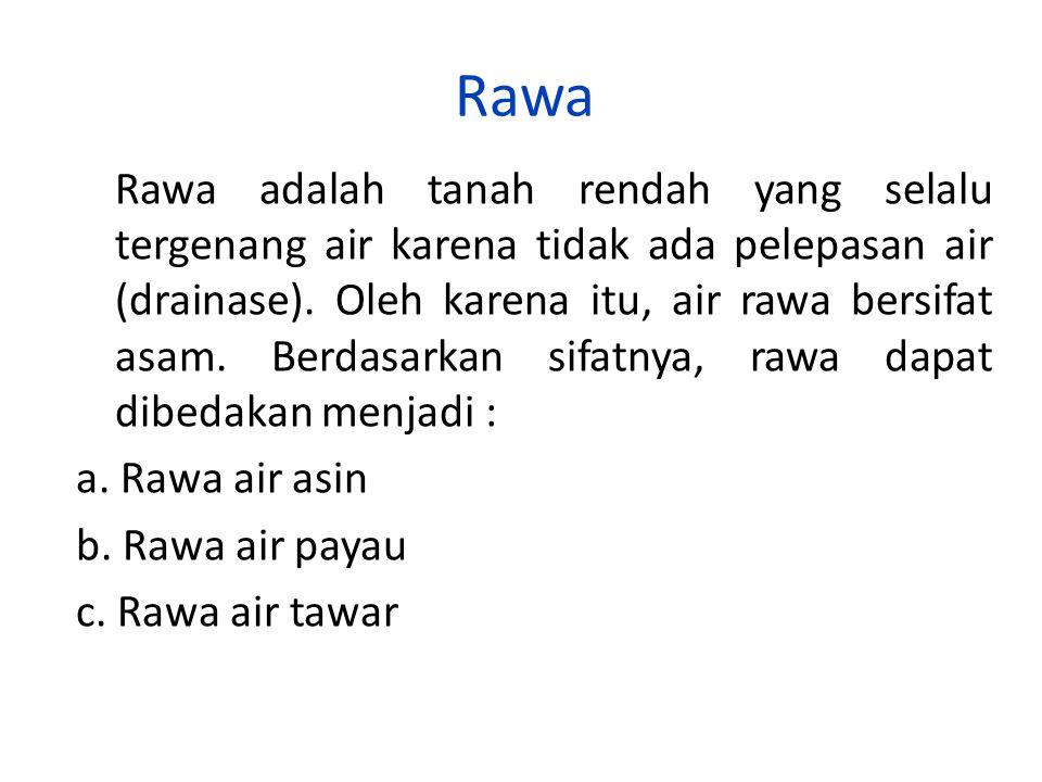 Rawa Rawa adalah tanah rendah yang selalu tergenang air karena tidak ada pelepasan air (drainase). Oleh karena itu, air rawa bersifat asam. Berdasarka