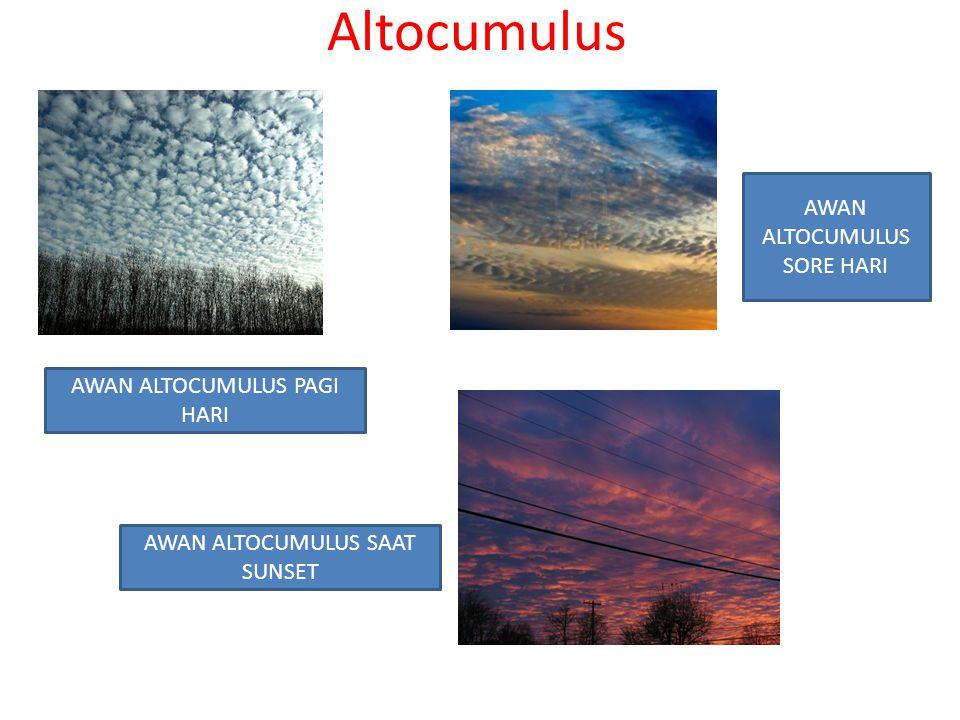 Altocumulus AWAN ALTOCUMULUS PAGI HARI AWAN ALTOCUMULUS SORE HARI AWAN ALTOCUMULUS SAAT SUNSET