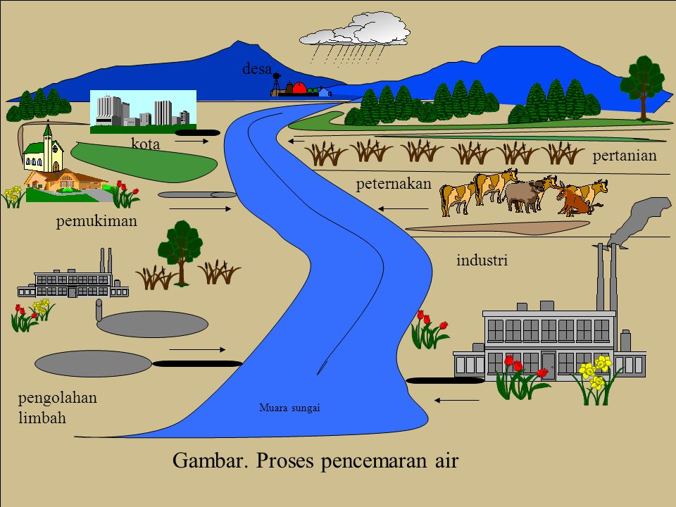 Gambar. Proses pencemaran air desa kota pemukiman pertanian peternakan industri pengolahan limbah Muara sungai