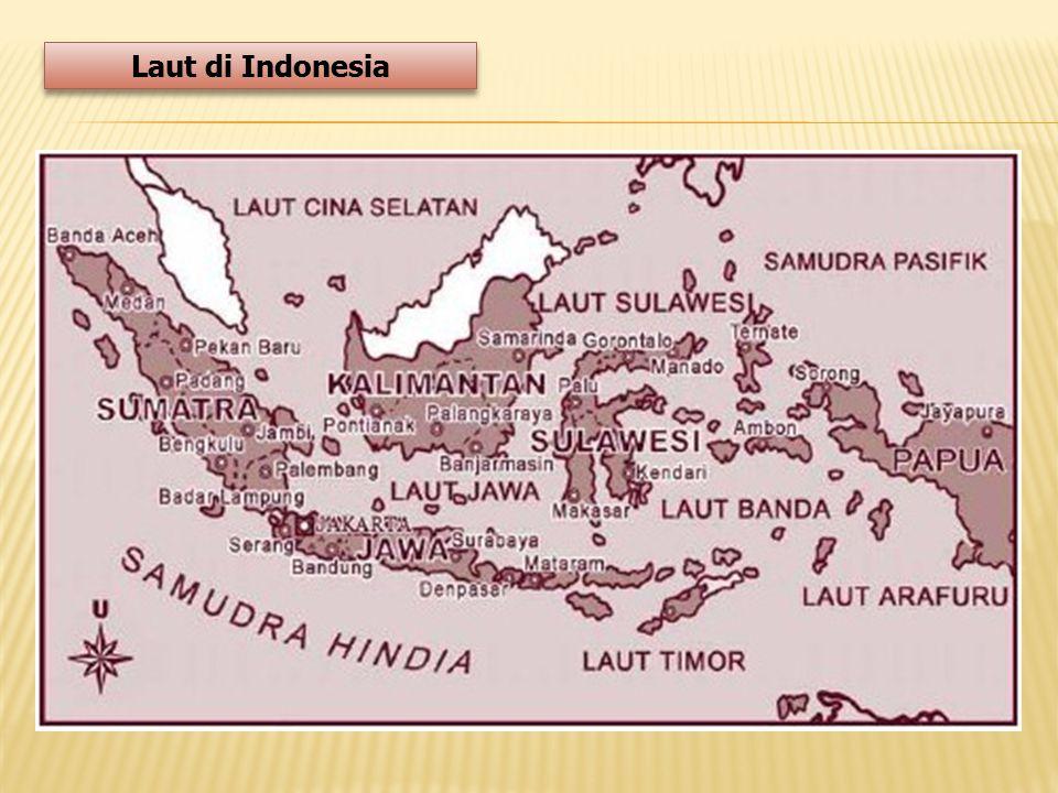 Laut di Indonesia