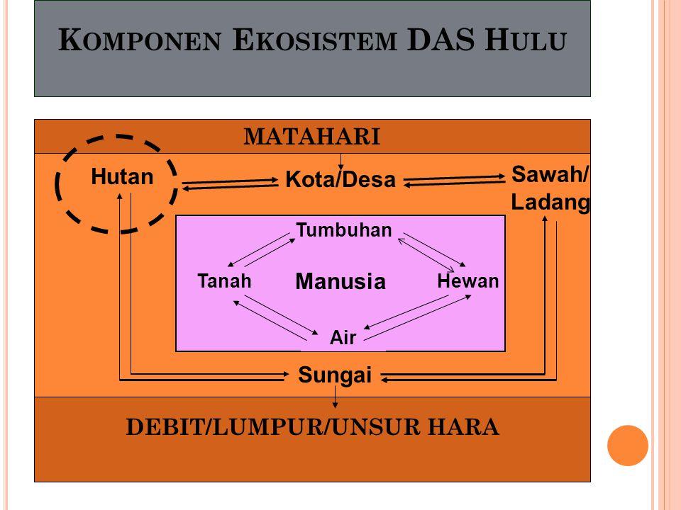 K OMPONEN E KOSISTEM DAS H ULU MATAHARI DEBIT/LUMPUR/UNSUR HARA Hutan Kota/Desa Sawah/ Ladang Sungai Tumbuhan Air TanahHewan Manusia