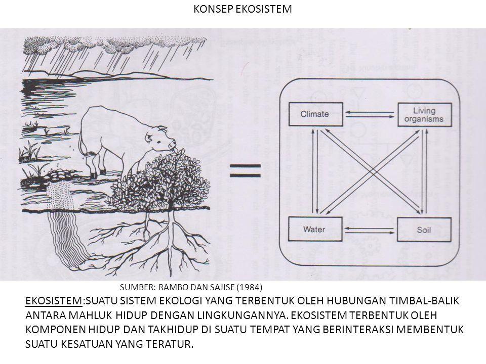 KONSEP EKOSISTEM SUMBER: RAMBO DAN SAJISE (1984) EKOSISTEM:SUATU SISTEM EKOLOGI YANG TERBENTUK OLEH HUBUNGAN TIMBAL-BALIK ANTARA MAHLUK HIDUP DENGAN L