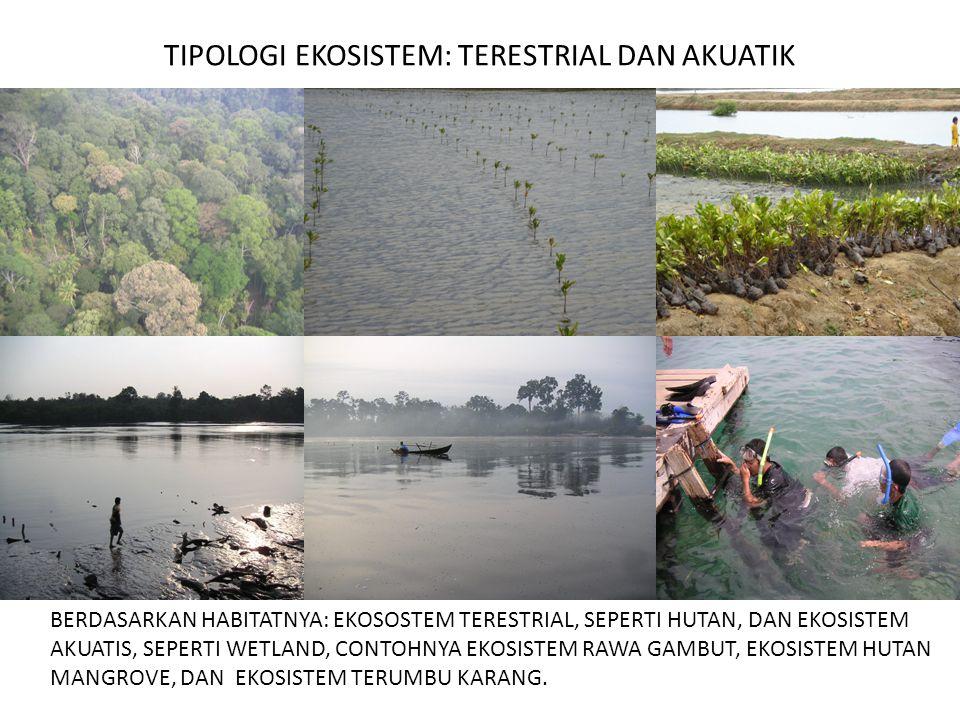 FUNGSI HUTAN GAMBUT Ekosistem lahan gambut memiliki fungsi, yaitu pengaturan hidrologi, sarana konservasi keanekaragaman hayati, penjaga iklim global, dan sarana budidaya.