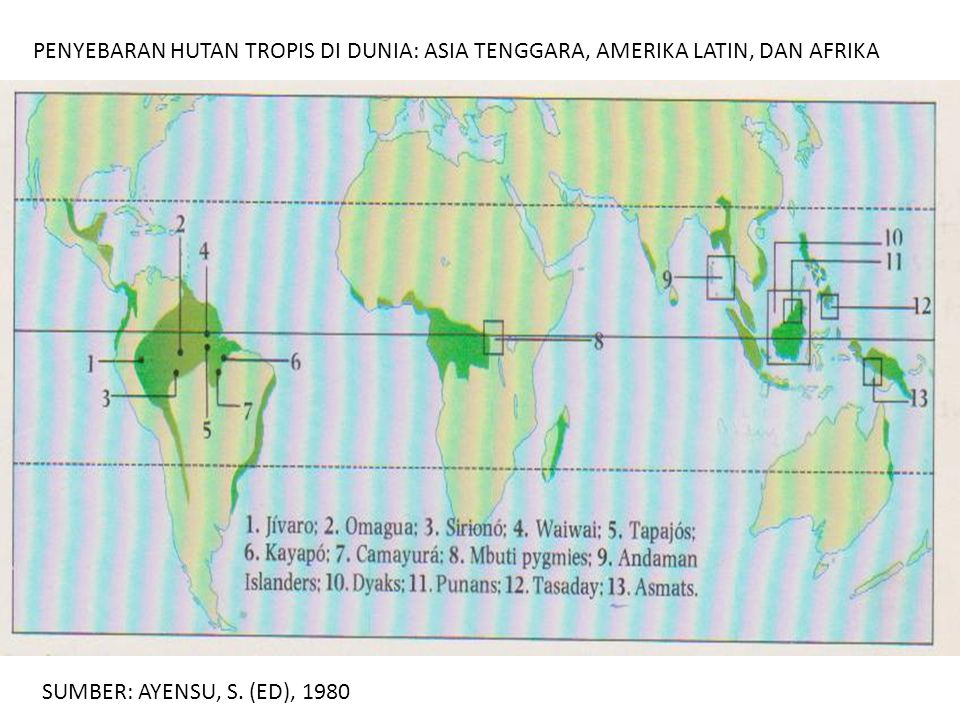 PENYEBARAN HUTAN TROPIS DI DUNIA: ASIA TENGGARA, AMERIKA LATIN, DAN AFRIKA SUMBER: AYENSU, S. (ED), 1980