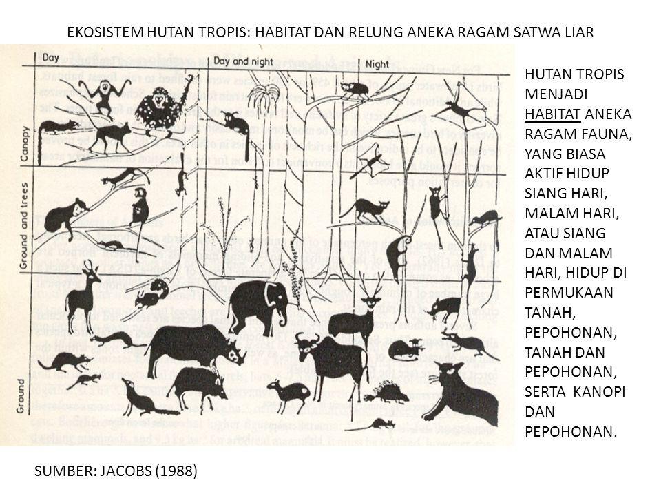 EKOSISTEM HUTAN TROPIS: SEBAGAI RELUNG ANEKA RAGAM PRIMATA ANEKA RAGAM PRIMATA MENEMPATI RELUNG DI PEPOHONAN HUTAN TERGANTUNG DARI PROFESI ATAU JENIS MAKANANNYA (SUMBER: JACOBS, 1988).