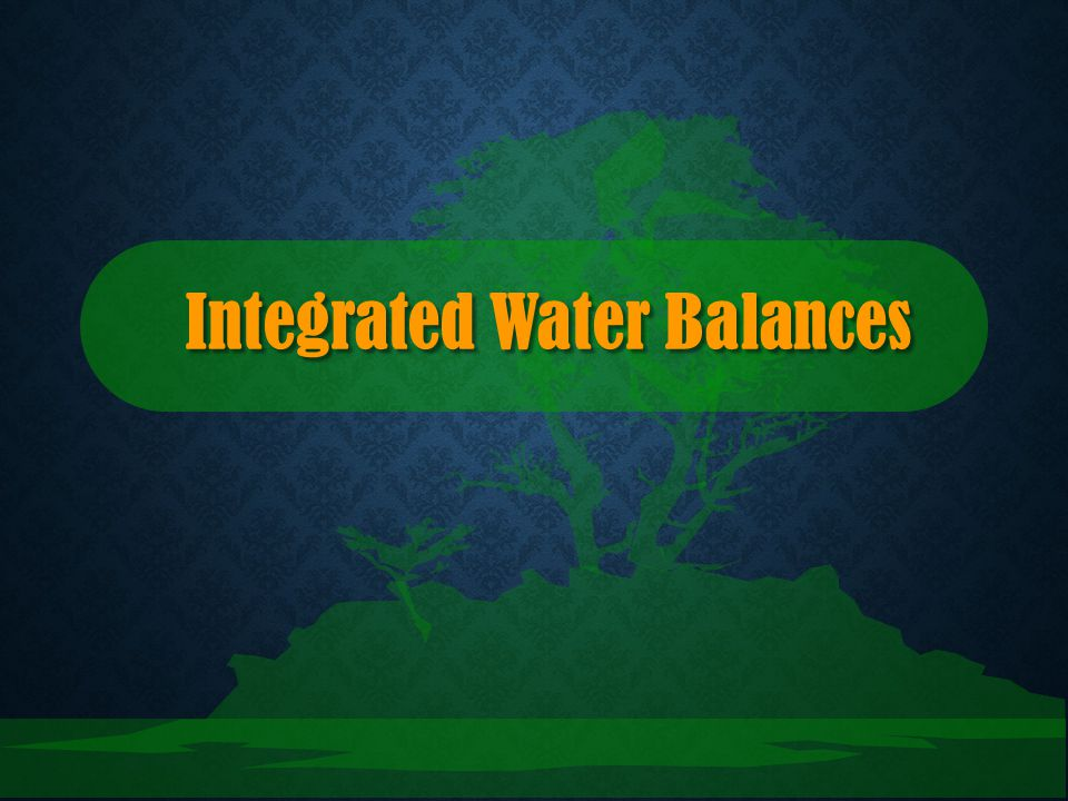 Integrated Water Balances