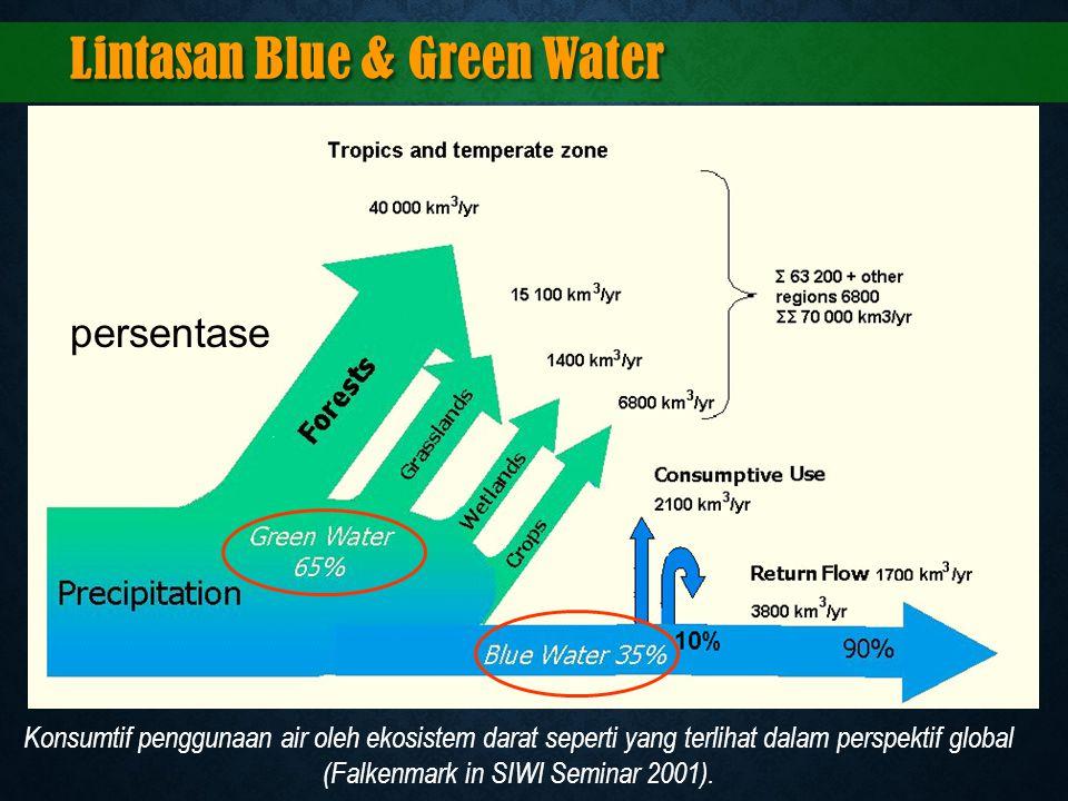 Konsumtif penggunaan air oleh ekosistem darat seperti yang terlihat dalam perspektif global (Falkenmark in SIWI Seminar 2001). Lintasan Blue & Green W
